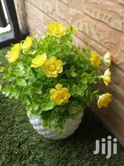 Flowers For Decorations For Sale   Landscaping & Gardening Services for sale in Yobe State, Damaturu