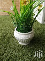 Quality Decorative Beautiful Cup Flowers For Sale | Landscaping & Gardening Services for sale in Abuja (FCT) State, Galadimawa