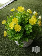 Decorative Mini Cup Flowers For Sale | Landscaping & Gardening Services for sale in Anambra State, Awka