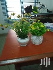 Small Cup Flowers For Decorations At Sales | Garden for sale in Oyo State, Saki East