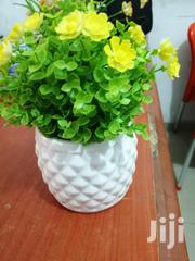 Flowers On Cups For Beautification Of Homes And Offices For Sale | Garden for sale in Benue State, Oju