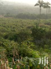 Land At Ijako, Near Araga Epe   Land & Plots For Sale for sale in Lagos State, Epe
