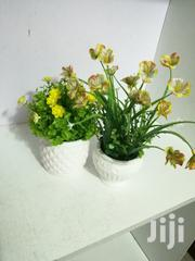 Table Cup Designed Flowers For Sale | Garden for sale in Lagos State, Agege
