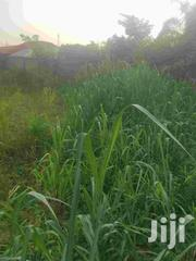 Land for Sale in Arepo Near Ojodu Berger | Land & Plots For Sale for sale in Lagos State, Ojodu