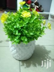 Affordable Beautiful Decorative Mini Cup Flowers For Decorations | Home Accessories for sale in Cross River State, Akamkpa