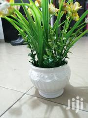 Ceramic Potted Cup Flowers For Sale Nationwide | Garden for sale in Jigawa State, Kaugama