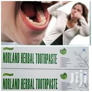 Norland Herbal Toothpaste Permanent Cure for Mouth Odour Tooth Decay   Bath & Body for sale in Abuja (FCT) State, Central Business District