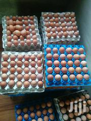 Fresh Eggs For Sale   Meals & Drinks for sale in Oyo State, Ibadan North West