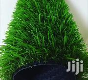 Green Grass | Landscaping & Gardening Services for sale in Lagos State, Lagos Mainland
