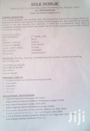For Administrative Or Any Job. | Other CVs for sale in Abuja (FCT) State, Karmo