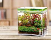 Aquarium Tank | Pet's Accessories for sale in Lagos State, Ipaja