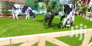 Turf Carpet For Sale Osun State   Landscaping & Gardening Services for sale in Lagos State, Ikeja