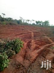 Land For Sale | Land & Plots For Sale for sale in Ogun State, Ifo