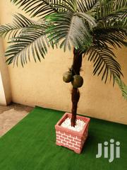 Synthetic Coconut Tree For Sale | Garden for sale in Lagos State, Ilupeju