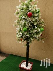 Outdoor Decorative Flower Tree | Landscaping & Gardening Services for sale in Lagos State, Ikeja