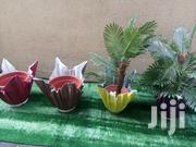 Order For Your Vase Plant Nationwide | Home Accessories for sale in Cross River State, Abi