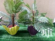 Adorable Vase Planter In Nigeria | Home Accessories for sale in Cross River State, Akpabuyo