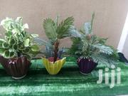 Get Affordable Vase Planters For Sale | Home Accessories for sale in Lagos State, Ikotun/Igando