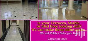 Terrazzo Floor Polishing And Restoration