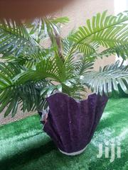Get Affordable Polymer Fabric Planter For Sale | Garden for sale in Lagos State, Ikeja