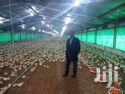 Poultry Farm Manager | Farming & Veterinary CVs for sale in Lagos State, Alimosho