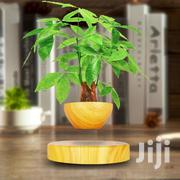 Magnetic Levitating Flower Plant For Home Office Decor | Garden for sale in Lagos State, Ilupeju