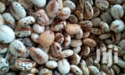 Castor Seeds Pure Castor | Feeds, Supplements & Seeds for sale in Plateau State, Jos