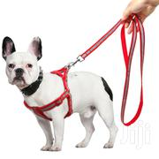 Nylon Reflective Dog Harness Set For Small Medium Dogs | Pet's Accessories for sale in Lagos State, Ifako-Ijaiye