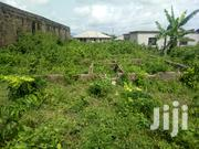 Half Plot of Land at Onihale , Sango Ifo Road | Land & Plots For Sale for sale in Ogun State, Ifo