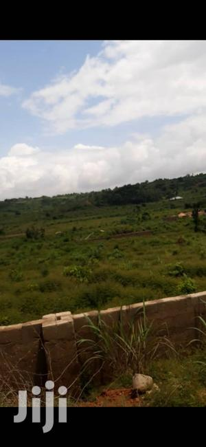 9 Hectares of Land(135 Plots) at Melate Moro,Along the Highway