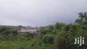 Over 100 Acres of Farmland for Sale at Epe Lagos
