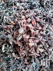 Star Annis Natural Spice | Feeds, Supplements & Seeds for sale in Rivers State, Obio-Akpor
