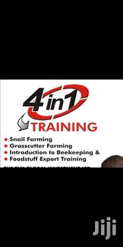 Bonanza On Agricultural Products | Classes & Courses for sale in Lagos State, Lagos Island