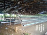 Battery Cage | Farm Machinery & Equipment for sale in Kwara State, Ilorin West