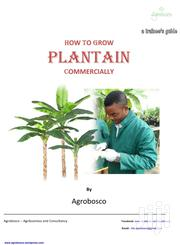 E-book On How To Grow Plantain / Banana Commercially | Books & Games for sale in Oyo State, Ibadan North