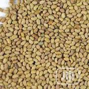 Alfalfa Seed (100g) | Feeds, Supplements & Seeds for sale in Abuja (FCT) State, Dutse-Alhaji