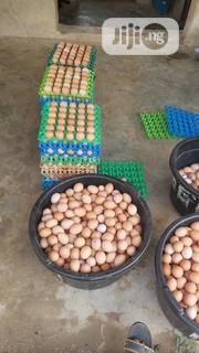 Egg In Large Quantity For Sale (Always) | Meals & Drinks for sale in Lagos State, Agege
