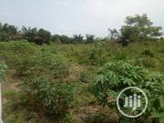 Cheap Plot of Dry Land for Sale at Badore Ajah. | Land & Plots For Sale for sale in Lagos State, Ajah