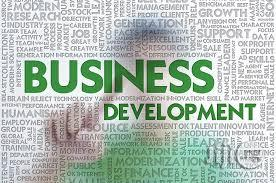 Business Development Needs