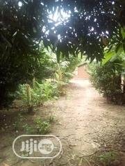 Land At Agbowu Village For Sales | Land & Plots For Sale for sale in Oyo State, Afijio