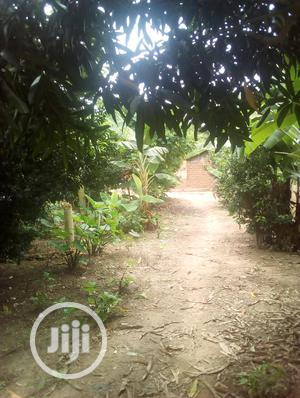 Land At Agbowu Village For Sales