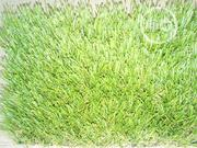 Grass Carpet | Garden for sale in Abuja (FCT) State, Wuse