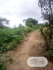 Agbowo Land For Sale Whit Light There | Land & Plots For Sale for sale in Oyo State, Afijio