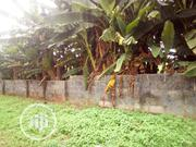 A Full Plot Of Land 60/120 Progressive Estate {Road 5} Baruwa Lagos | Land & Plots For Sale for sale in Lagos State, Ipaja