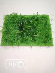 Beautify Your Home With Green Flower Frame | Garden for sale in Benue State, Gwer