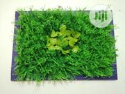 Wall Plant Flower Frame For Sale | Manufacturing Services for sale in Abuja (FCT) State, Galadimawa