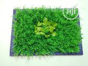Beautify Your Homes With Artificial Wall Plant For Sale | Manufacturing Services for sale in Taraba State, Lau