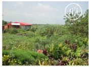 For Sale 200 Acres of Land at IBEJU LEKKI With Good Titles. | Land & Plots For Sale for sale in Lagos State, Ibeju