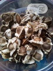 Moringa Seeds | Feeds, Supplements & Seeds for sale in Rivers State, Port-Harcourt