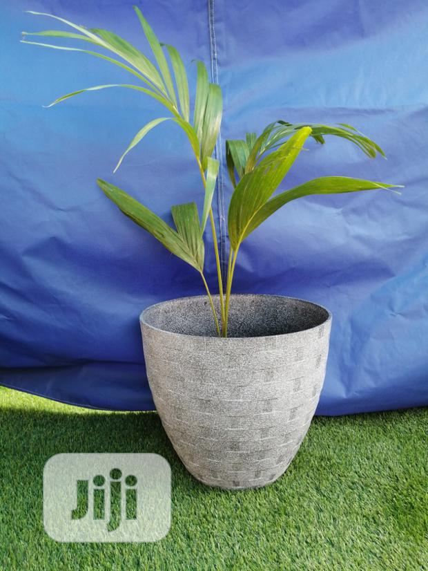 Quality Flower Planter For Sale